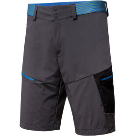 Salewa Pedroc Cargo 2 DST Shorts Men grey/blue